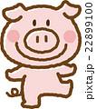豚 22899100