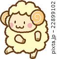 羊 22899102