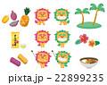 沖縄セット【沖縄・シリーズ】 22899235