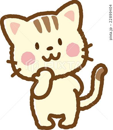 猫(縞猫) 22899404