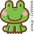 カエル 22899406