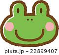 カエル 22899407