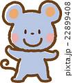 ネズミ 22899408