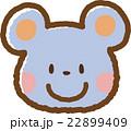 ネズミ 22899409