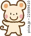 ネズミ(白) 22899410