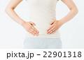 ダイエット 女性 お腹の写真 22901318