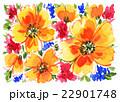 イラスト 花柄 水彩のイラスト 22901748