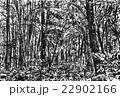 森林 22902166
