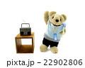 ラジオ体操をするくまちゃん 22902806