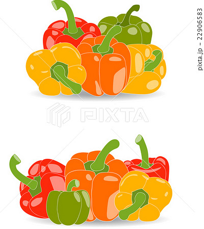 Pepper Set Of Yellow Red Green And Orangeのイラスト素材 22906583