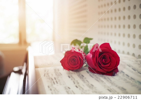 rose on piano. 22906711