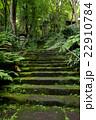 コケに覆われた山寺の参道 22910784