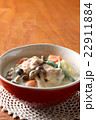 チキンのクリーム煮 22911884