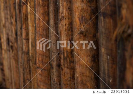 自然の中の木材の背景  22913551