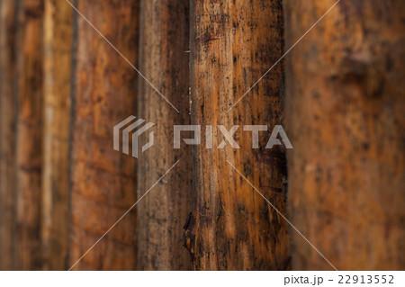 自然の中の木材の背景  22913552