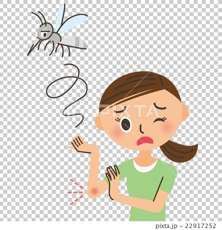 蚊子 女生 女孩 22917252