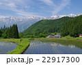 信州 白馬村 青鬼(あおに)集落の春 伝統的建造物群保存地区 棚田のある山間の小集落 22917300