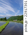 信州 白馬村 青鬼(あおに)集落の春 伝統的建造物群保存地区 棚田のある山間の小集落 22917301