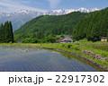 信州 白馬村 青鬼(あおに)集落の春 伝統的建造物群保存地区 棚田のある山間の小集落 22917302