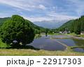 信州 白馬村 青鬼(あおに)集落の春 伝統的建造物群保存地区 棚田のある山間の小集落 22917303