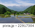 信州 白馬村 青鬼(あおに)集落の春 伝統的建造物群保存地区 棚田のある山間の小集落 22917304