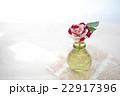 薔薇 花 瓶の写真 22917396