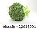 ブロッコリー 野菜 緑黄色野菜の写真 22918001