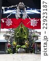 水掛不動 法善寺 苔の写真 22923187