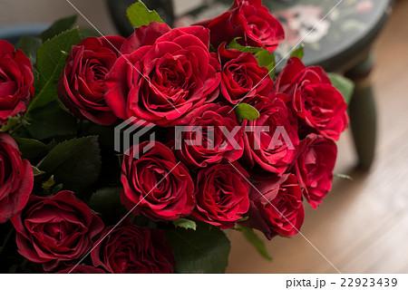 バラの花 22923439