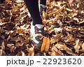 秋を歩く 22923620
