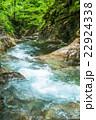 エコイメージ・森林と清流 22924338