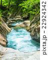 エコイメージ・森林と清流 22924342