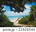 海岸 海 夏の写真 22926540