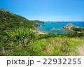 ブタ海岸 小笠原諸島 父島の写真 22932255