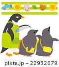 アデリーペンギン 保育園 ひなのイラスト 22932679