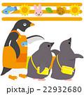 アデリーペンギン 保育園 ひなのイラスト 22932680