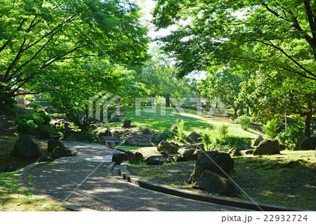 王禅寺ふるさと公園 22932724