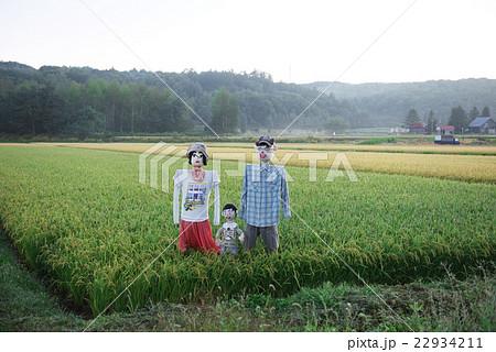 赤井川村のかかしの写真素材 [22934211] - PIXTA