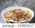 牛丼 22934317