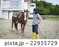 男性 馬 22935729