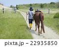 男性 馬 22935850