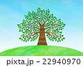 木 大木 丘のイラスト 22940970