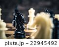 チェスの駒 クローズアップ 22945492