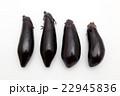 ナス 野菜 白バックの写真 22945836