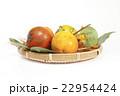 秋の味覚甘柿 22954424