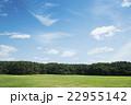 緑がいっぱいの広い公園 22955142