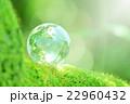 森の中の地球儀 22960432