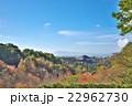 古都奈良の秋 22962730