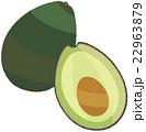 野菜 アボカド ベクターのイラスト 22963879