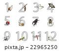 12か月の昆虫の飾り数字 22965250